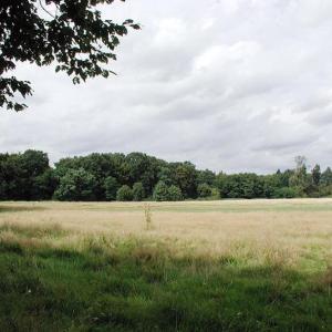 Merheimer Heide